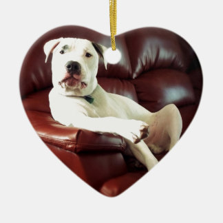 funny white pit bull dog on the couch christmas ornament