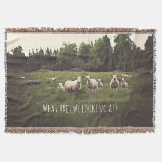 Funny white sheep & lamb in green pasture throw blanket