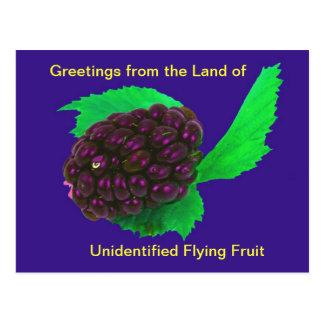 Funny & Wierd Postcard Unidentified Flying Fruit