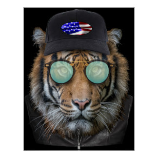 Funny wildlife dressed up Bengal Tiger Poster