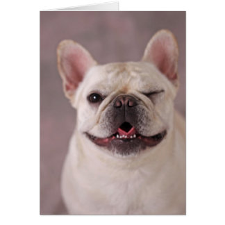 Funny winking Dog French Bulldog Card