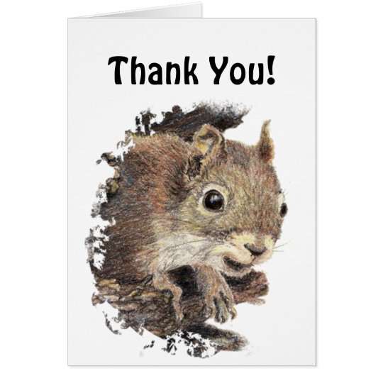 Funny, Would Have Gone Nuts!  Thank You Squirrel Card