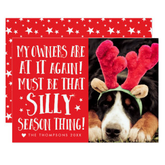 Funny Xmas Quote Pets Christmas Greeting Flat Card