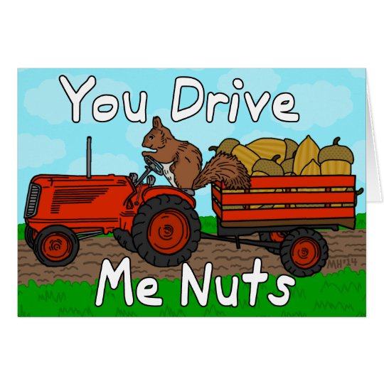 Funny You Drive Me Nuts Squirrel Pun Valentine's