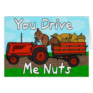 Funny You Drive Me Nuts Squirrel Pun Valentine's Greeting Card