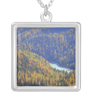 Fuorn Pass Silver Plated Necklace
