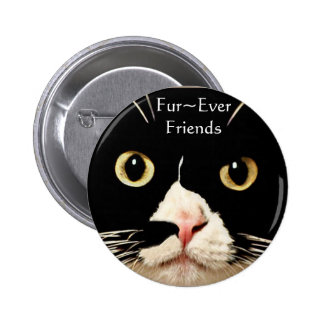 Fur Ever Friends Pinback Button