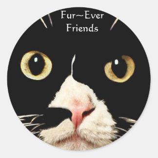 Fur Ever Friends Round Stickers