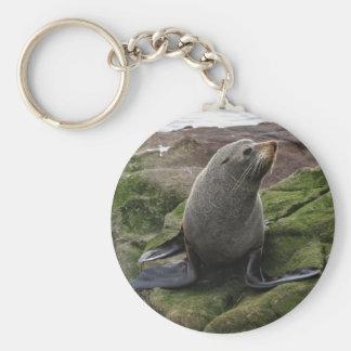 Fur Seal Basic Round Button Key Ring