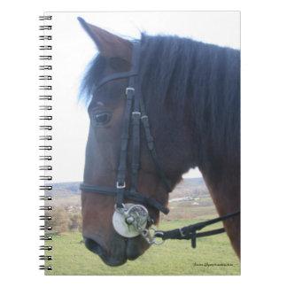 Furioso #13 notebook