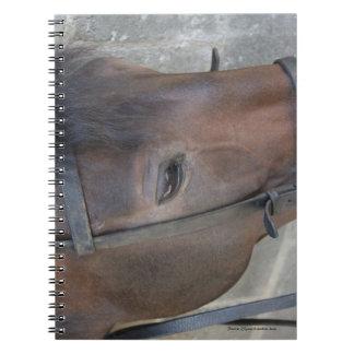 Furioso #8 notebook