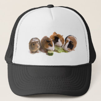 furnace guinea pigs who eat, trucker hat