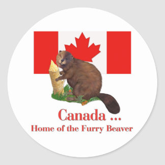 Furry Beaver Classic Round Sticker