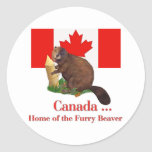 Furry Beaver Round Sticker