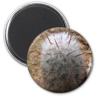Furry Cactus 6 Cm Round Magnet