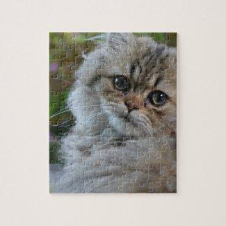 Furry Cat Puzzle