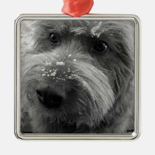Furry Dog Christmas Ornaments
