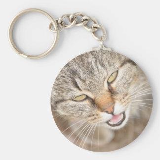 Furry Friend- Fawn Tiger Stripe Cat Basic Round Button Key Ring