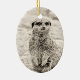 Furry Little Meerkat Ceramic Oval Decoration