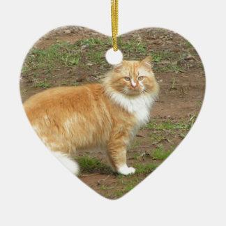 Furry Orange and White Cat Ceramic Heart Decoration