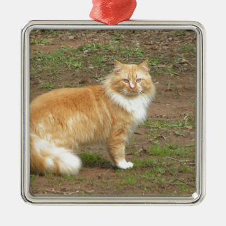 Furry Orange and White Cat Christmas Ornaments