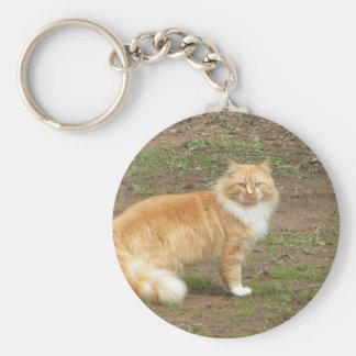 Furry Orange and White Cat Key Ring