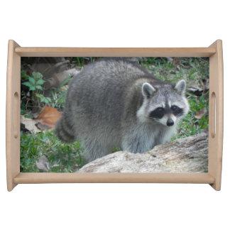 Furry Raccoon Photo Serving Tray