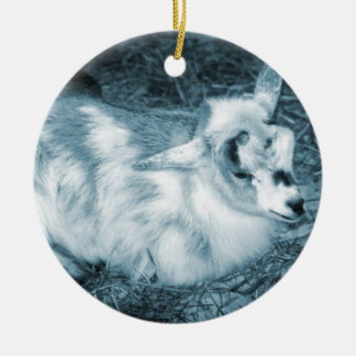 Furry small blue goat doeling baby right christmas ornament