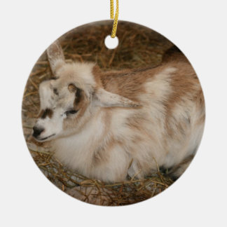 Furry small goat doeling baby christmas ornaments