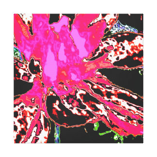 FUSCHIA ABSTRACT DAHLIA FLORAL FLOWER CANVAS PRINTS