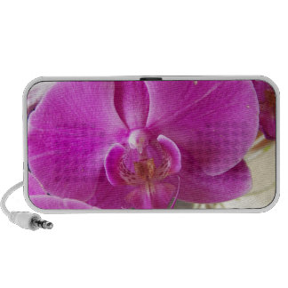 Fuschia Orchid Mini Speakers