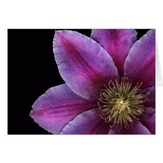 Fuscia Clematis Close-up Greeting Card