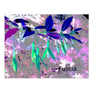 Fuscia Postcard