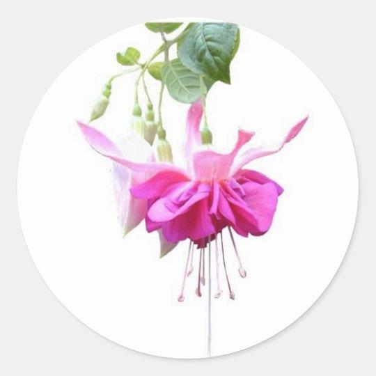 Fushia in pink classic round sticker