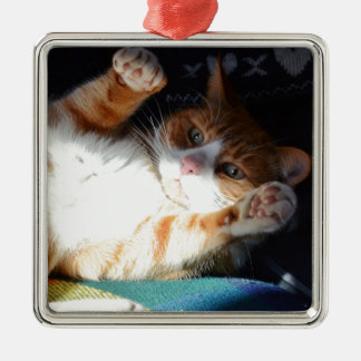 Fuss Me Please Pumpkin. Christmas Ornament