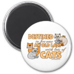 Future Crazy Cat Lady Funny Saying Design