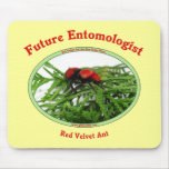 Future Entomologist Loves Bugs Mouse Pad