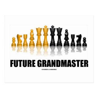 Future Grandmaster (Chess Set) Postcard