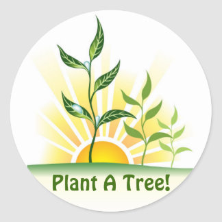 Future Trees Classic Round Sticker