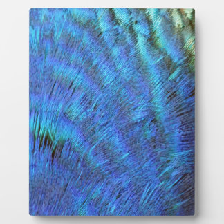 Fuzzy Blue Peacock Feathers Plaque