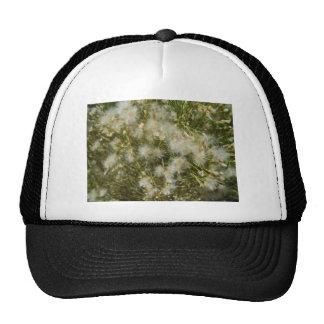 Fuzzy Bush Cap