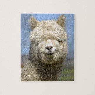 Fuzzy White Alpaca Face Jigsaw Puzzle