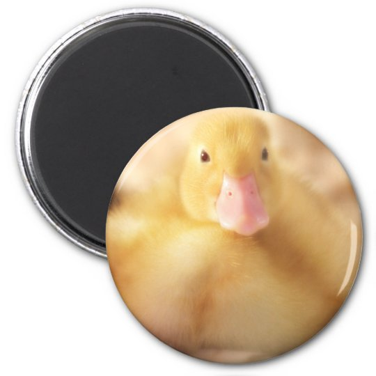 Fuzzy Yellow Duck Easter Baby Duckling 6 Cm Round Magnet