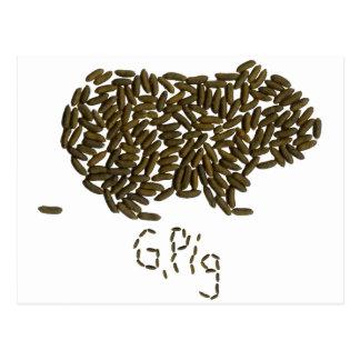 """G. Pig"" with Classic Guinea Pig Postcard"