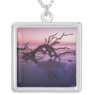 GA Jekyll Island, Tree graveyard on  beach at Silver Plated Necklace