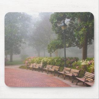 GA Savannah, Azaleas along brick sidewalk and Mouse Pad