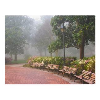 GA Savannah, Azaleas along brick sidewalk and Postcard