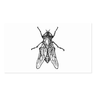 Gadfly Business Cards
