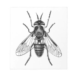 gadfly vintage illustration notepad