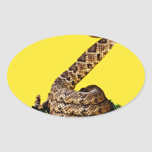 Gadsden Flag 2013 - Don't Tread on Me (Square) Oval Sticker